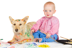 Pet Stain and Odor Removal Sherman Oaks